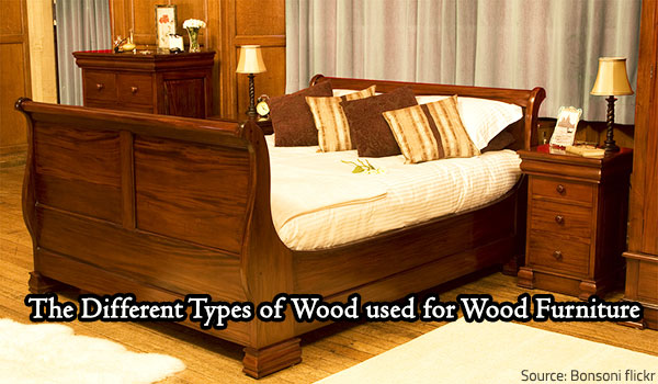 Types of wood for used in furniture making.