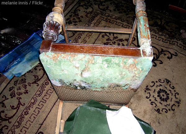 The effect of water damage on furniture is severe.
